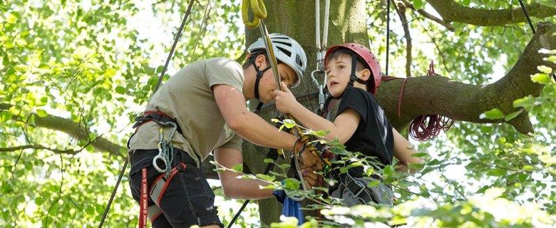 Top of a zipwire tree on OAA trip