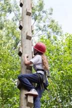 Climbing ropes course